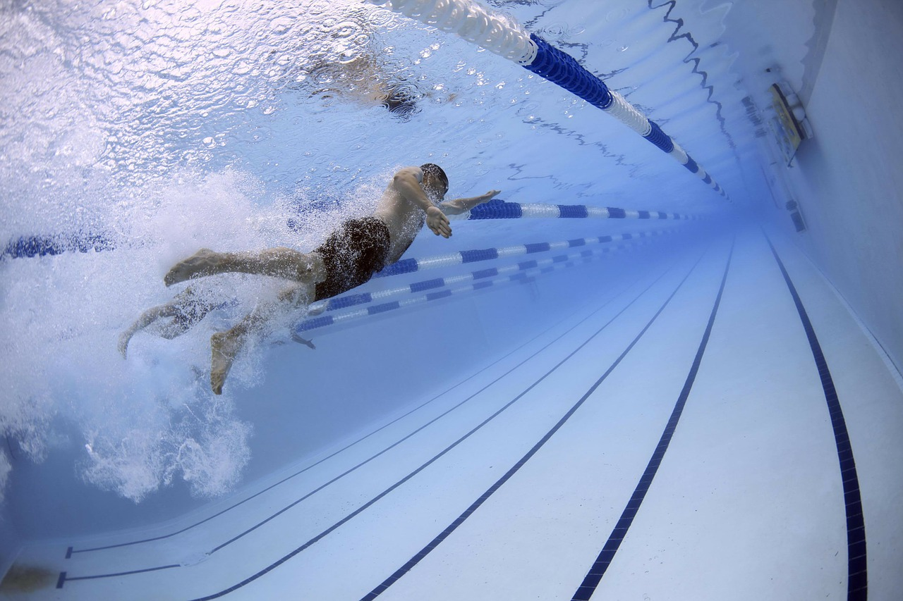 swimmers-79592_1280